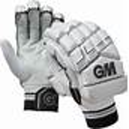 Picture of GM Cricket gloves